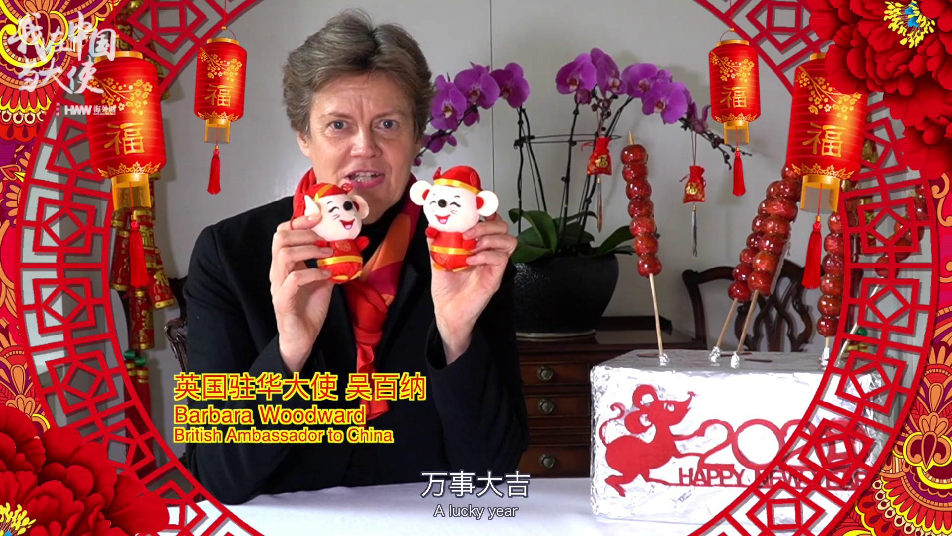 四海同庆中国春节:12国大使用中文拜年