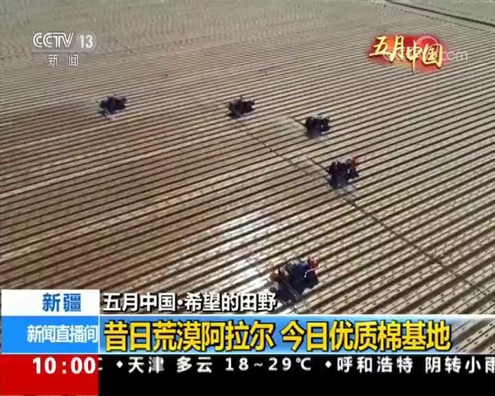 【五月中国·希望的田野】新疆:昔日荒漠阿拉尔 今日优质棉基地