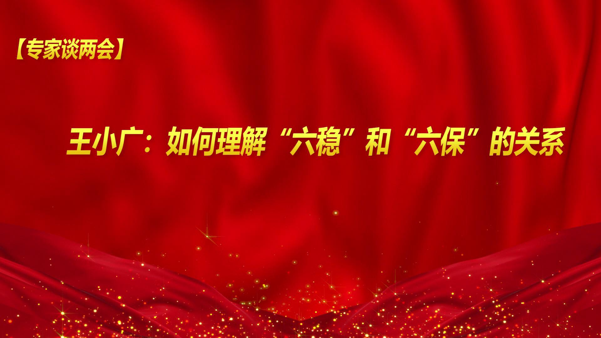 """【专家谈两会】王小广:如何理解""""六稳""""和""""六保""""的关系"""