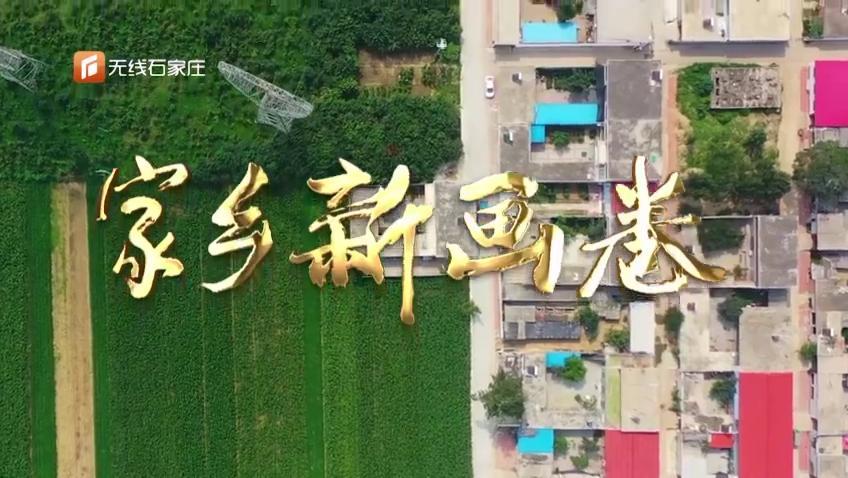河北灵寿南洼村:村子美了 村民富了