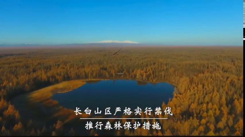 《生态中国·十期十美》吉林篇·白山松水育吉地
