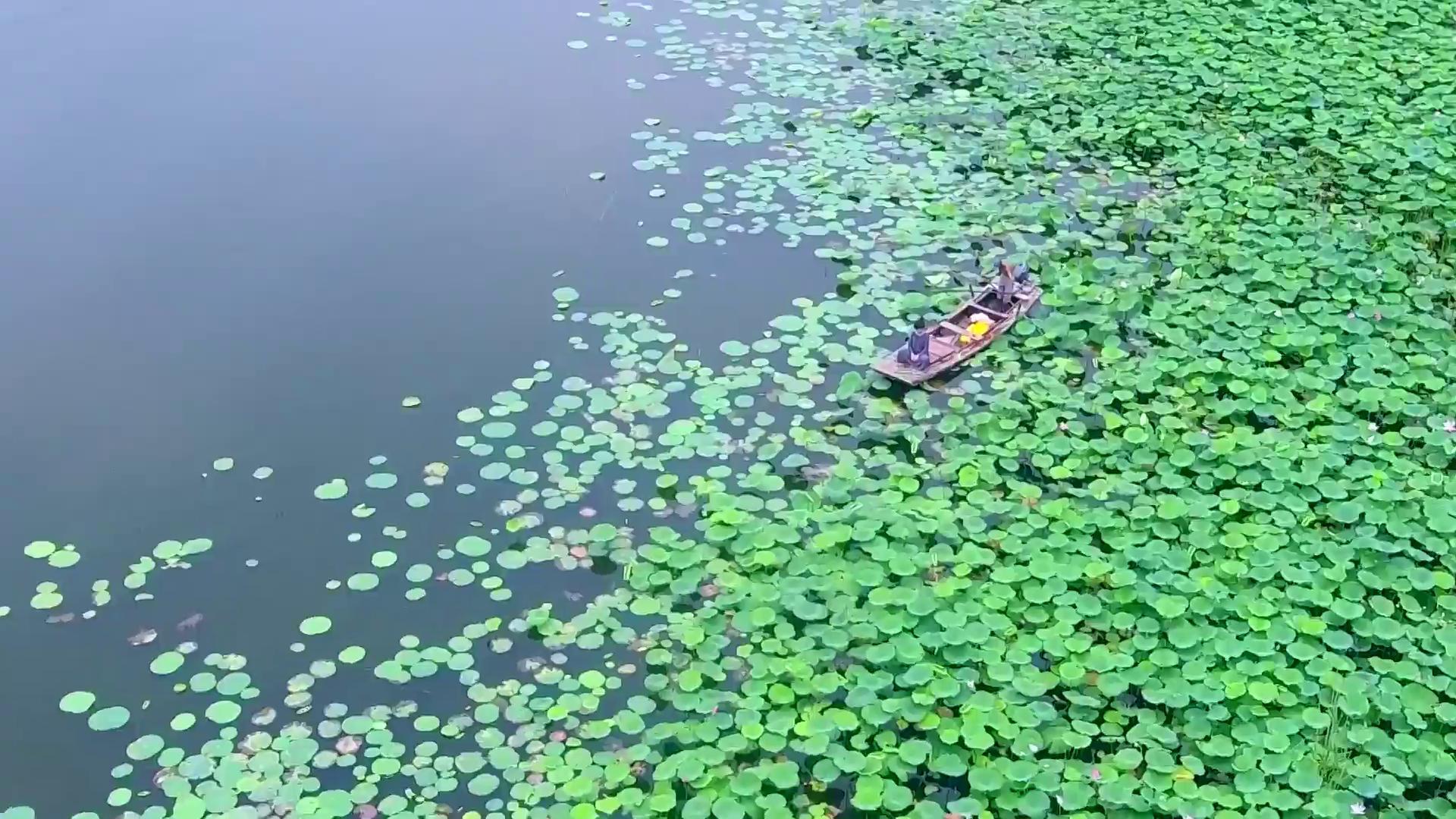 《生态中国·十期十美》河北篇·燕赵碧波赛江南