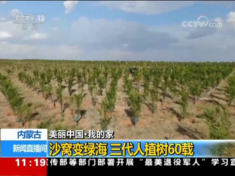 【美丽中国·我的家】内蒙古:沙窝变绿海 三代人植树60载