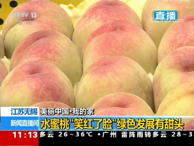 """【美丽中国·我的家】江苏无锡:水蜜桃""""笑红了脸"""" 绿色发展有甜头"""